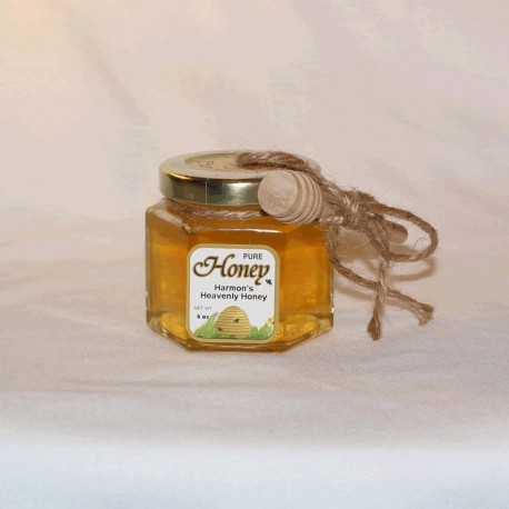6 oz Spring Honey with dipper